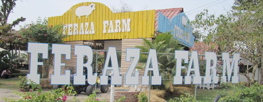 เฟอราซ่าฟาร์ม สวนผึ้ง